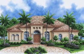 Florida home with three palms